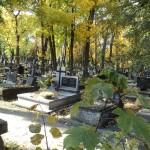Cmentarz w południe