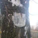Stara tablica upamiętniająca zmarłą rodzinę niemiecką